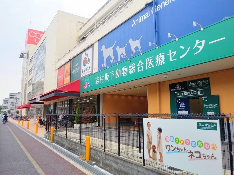 志村 坂下 動物 総合 医療 センター 志村坂下動物総合医療センターのブログ
